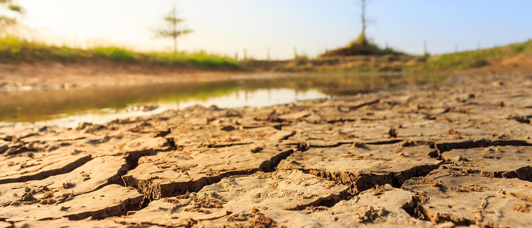 PIB e produção mundial serão afetados até 2050 por escassez de água, alerta ONU - Portal de Cidadania do Instituto Claro
