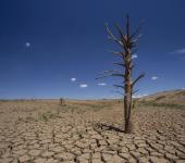 crise hídrica e relação com desmatamento