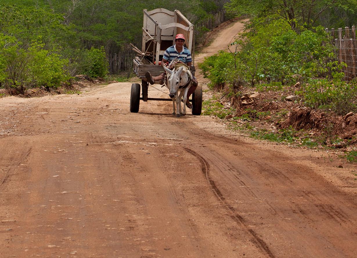 Foto de uma estrada de terra e, ao fundo, uma charrete com um homem
