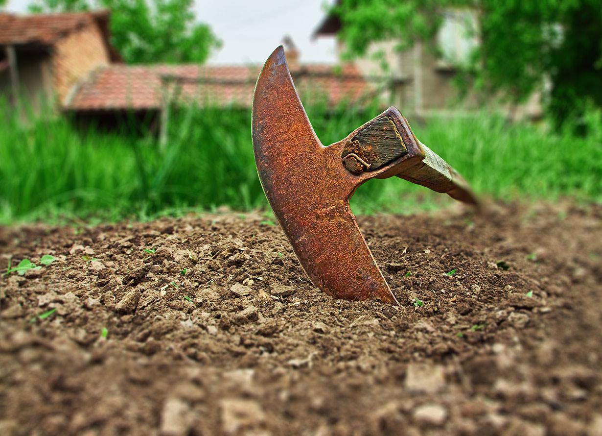 Imagem em destaque de uma enxada em um terreno. Ao fundo, há um trecho com grama bem verde.(crédito: oboltus – iStock)