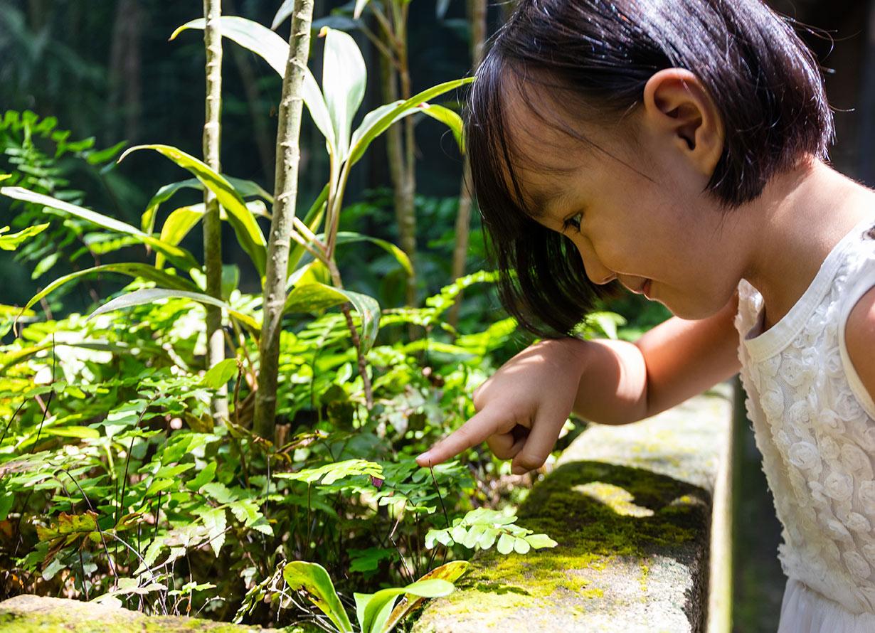 Foto de uma menina oriental observando bem de perto um jardim. Ela aponta para uma planta que está no canteiro (crédito: kiankhoon – iStock