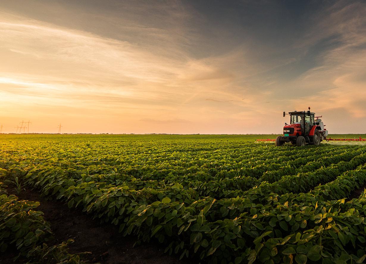 Foto em plano aberto de uma plantação com um trator vermelho ao fundo (crédito: fotokostic – iStock)