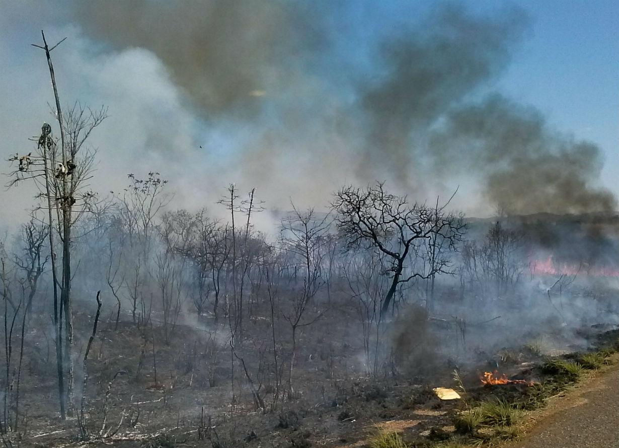Foto de uma reserva ambiental pegando fogo.