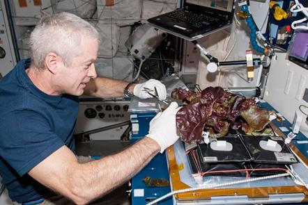 astrounata em estação espacial